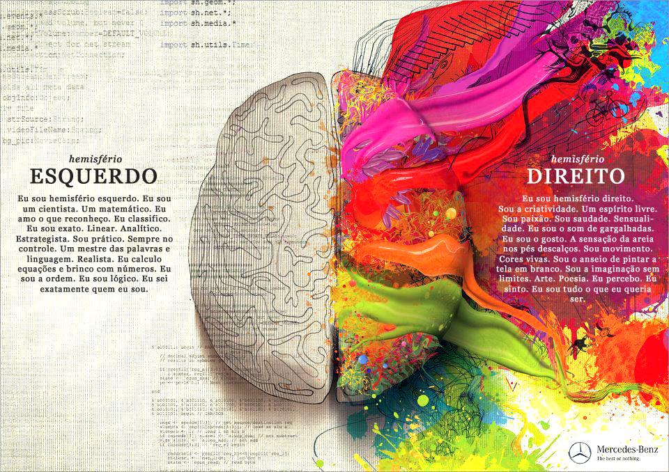 Facilitadora Fátima Cardoso hemisfério cerebral